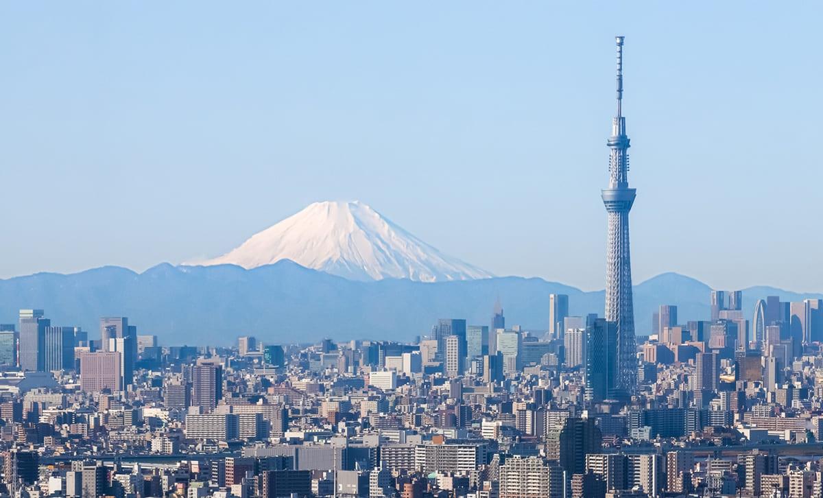 일본 航空券